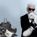 Самый модный принт – котики! Мяу!