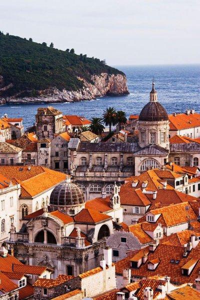 Что привезти из Хорватии: зеленый мед, галстук и съедобные сердца