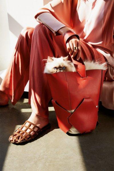 Женская сумка-ведро: самые стильные модели