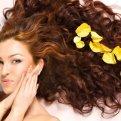 Масло Бэй - натуральное средство, улучшающее рост волос